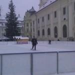 patinoar_2010